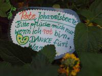 8--KTP-Grtnerei-Frchte-ernten-2014-10