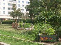 KTP-Schnecke--Garten-10-1