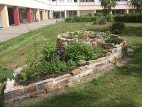 KTP-Schnecke--Garten-10-2