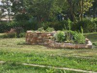 KTP-Schnecke--Garten-10-3