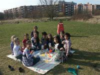 picknickmaerz